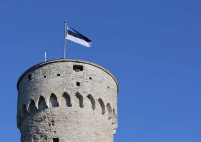 AEHS Celebrates Estonia's Declaration of Independence